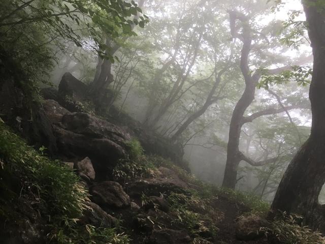 靄で幻想的