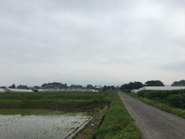 6/23 今朝の赤城山