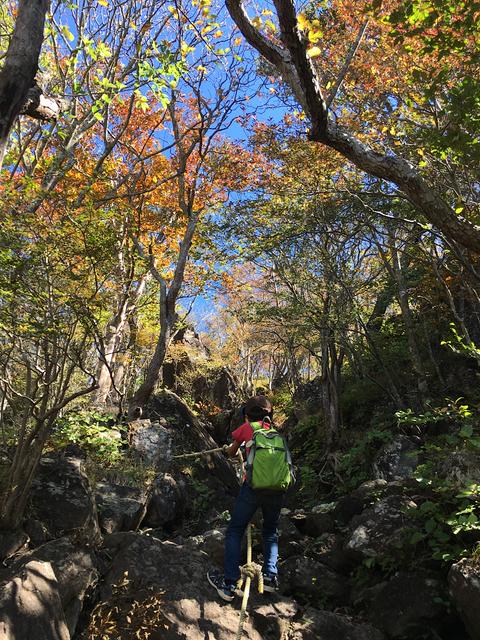 急登コースの紅葉