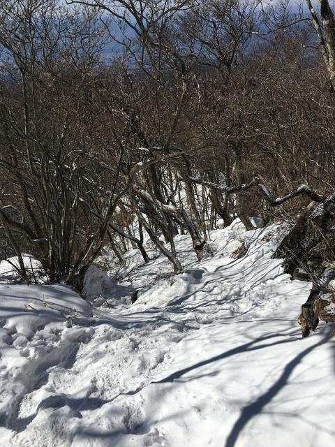 下りの雪道