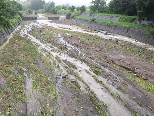 増水後の川