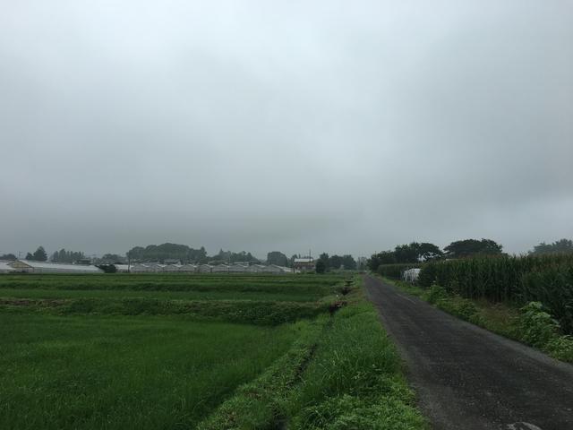 7/22 今朝の赤城山