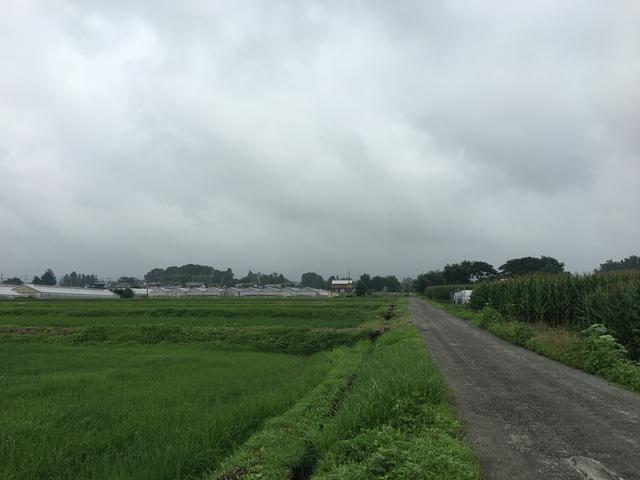 7/23 今朝の赤城山