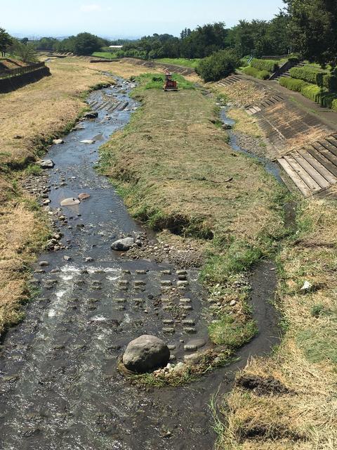 草刈りした河原