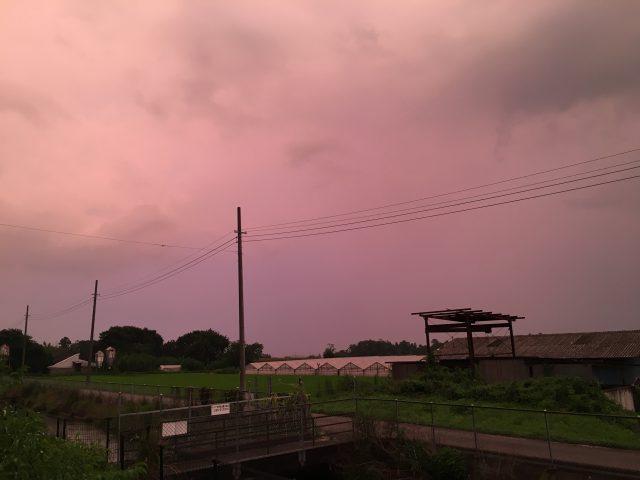 赤紫の夕刻