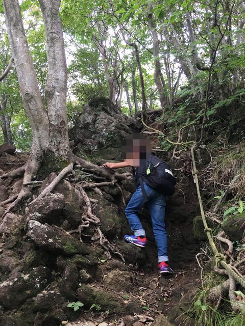 岩岩ゾーン