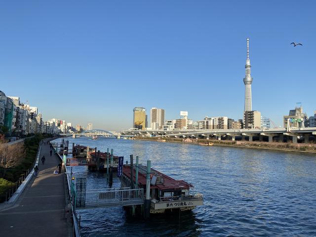 隅田川から望む東京スカイツリー