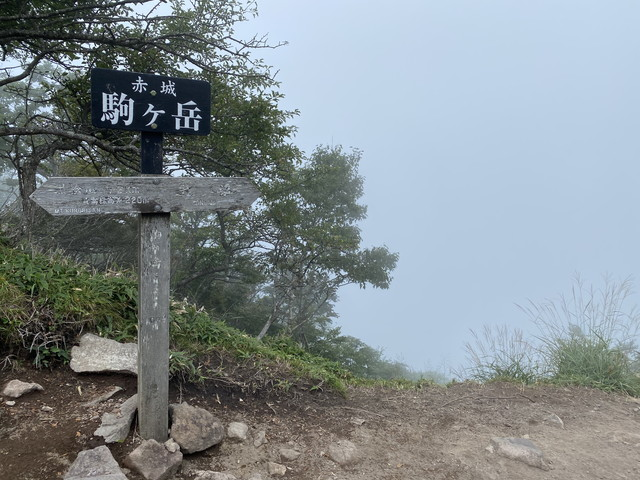 駒ヶ岳到着