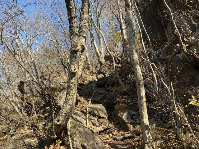 ゴロ岩の急登