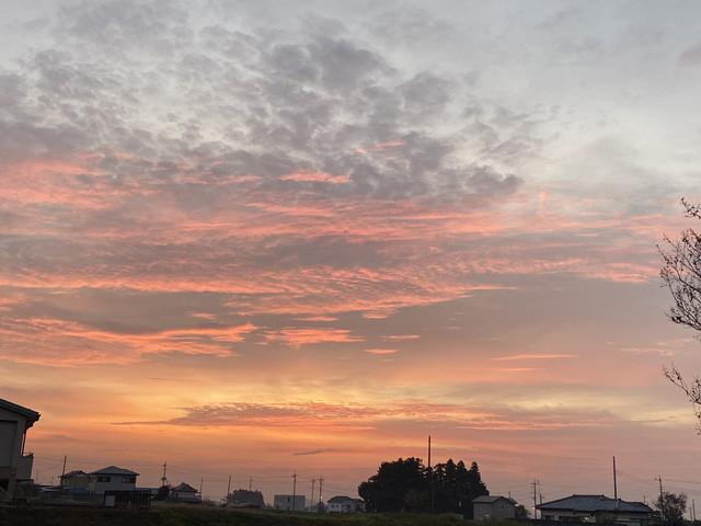 11/19 今朝の朝焼け