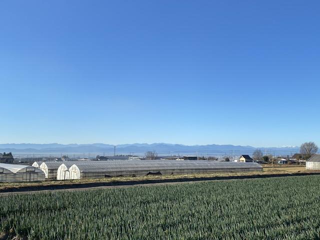 富岡・秩父方面の山々
