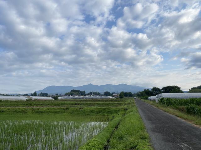 6/24 今朝の赤城山